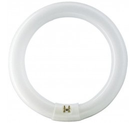 Philips Master TL-E Circular Super 80 Neon 22W, G10Q, lumina neutra