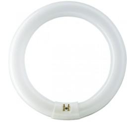 Philips Master TL-E Circular Super 80 Neon 32W, G10Q, lumina rece