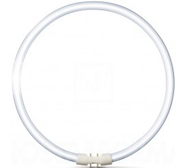 Philips Master TL5 Circular Neon 60W, 2GX13, lumina calda