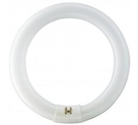 Philips Master TL-E Circular Super 80 Neon 22W, G10Q, lumina rece