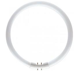 Philips Master TL5 Circular Neon 22W, 2GX13, lumina calda